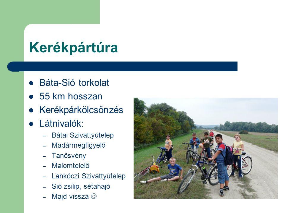 Kerékpártúra Báta-Sió torkolat 55 km hosszan Kerékpárkölcsönzés