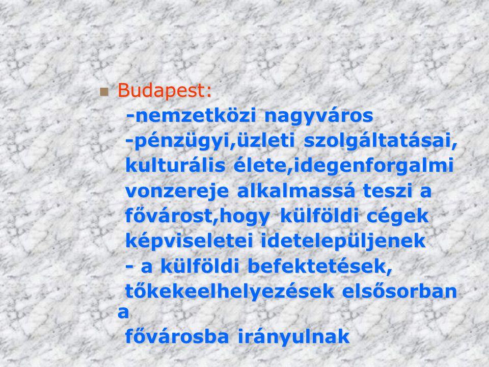 Budapest: -nemzetközi nagyváros. -pénzügyi,üzleti szolgáltatásai, kulturális élete,idegenforgalmi.
