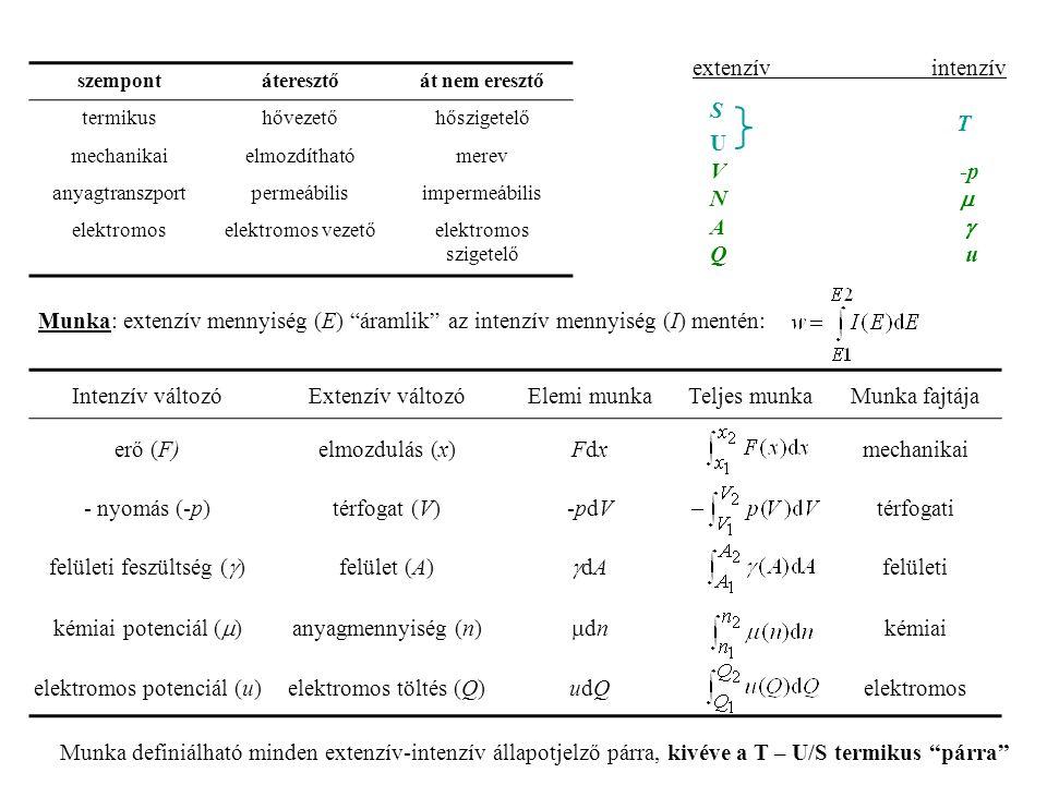 felületi feszültség (g) felület (A) gdA felületi kémiai potenciál (m)