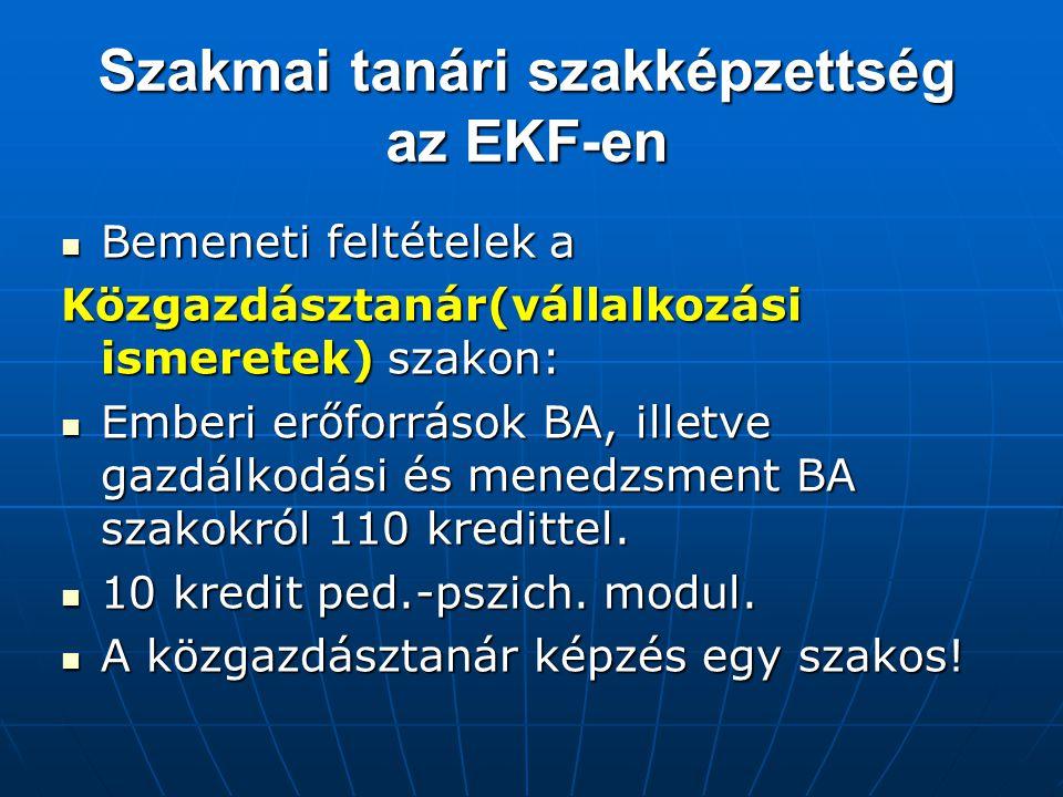 Szakmai tanári szakképzettség az EKF-en