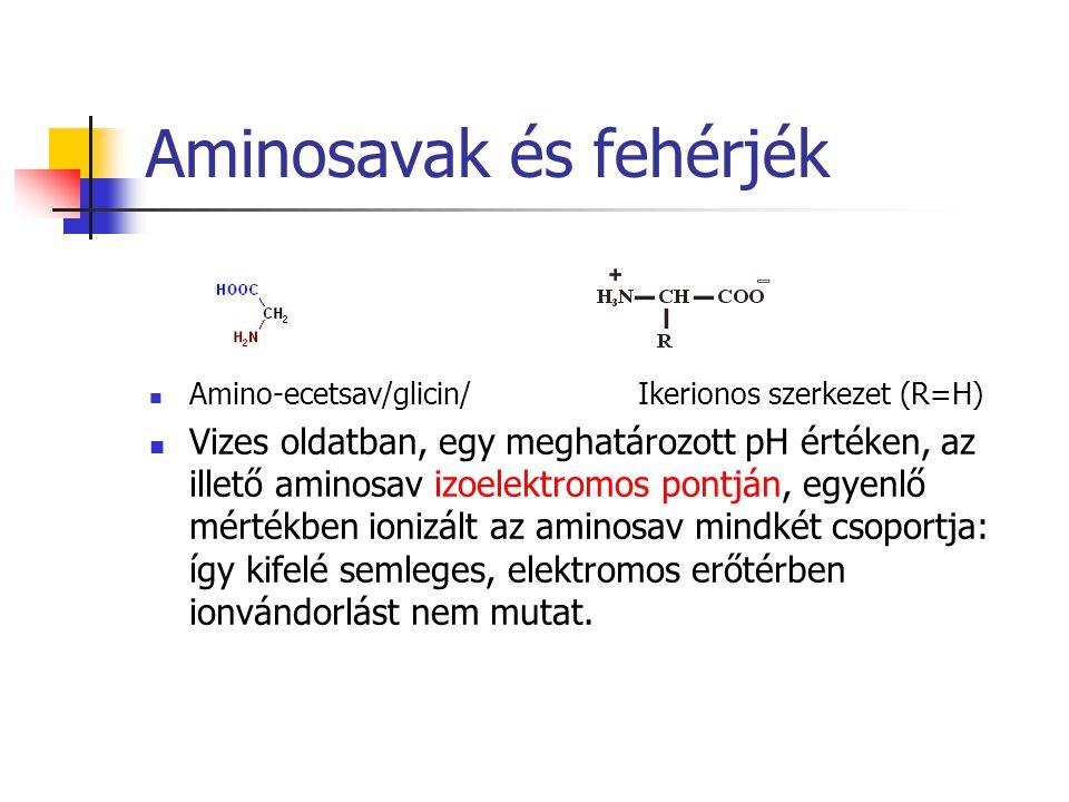 Aminosavak és fehérjék