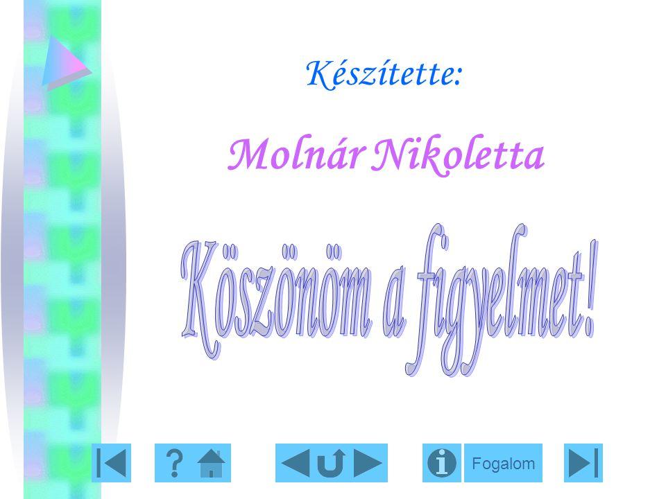 Készítette: Molnár Nikoletta Köszönöm a figyelmet! Fogalom
