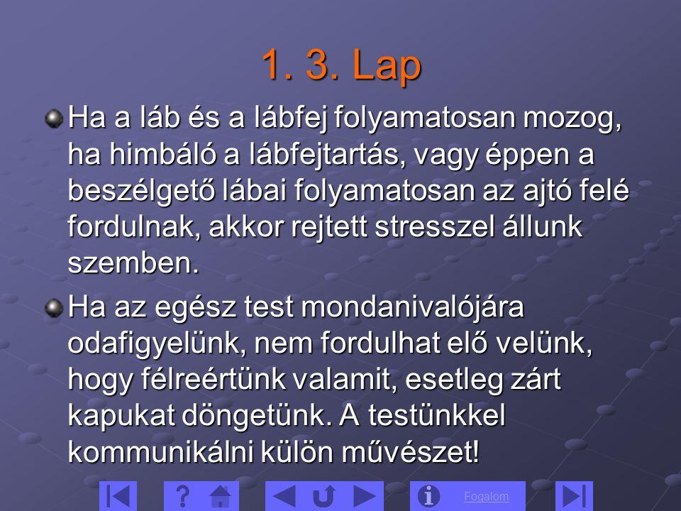 1. 3. Lap