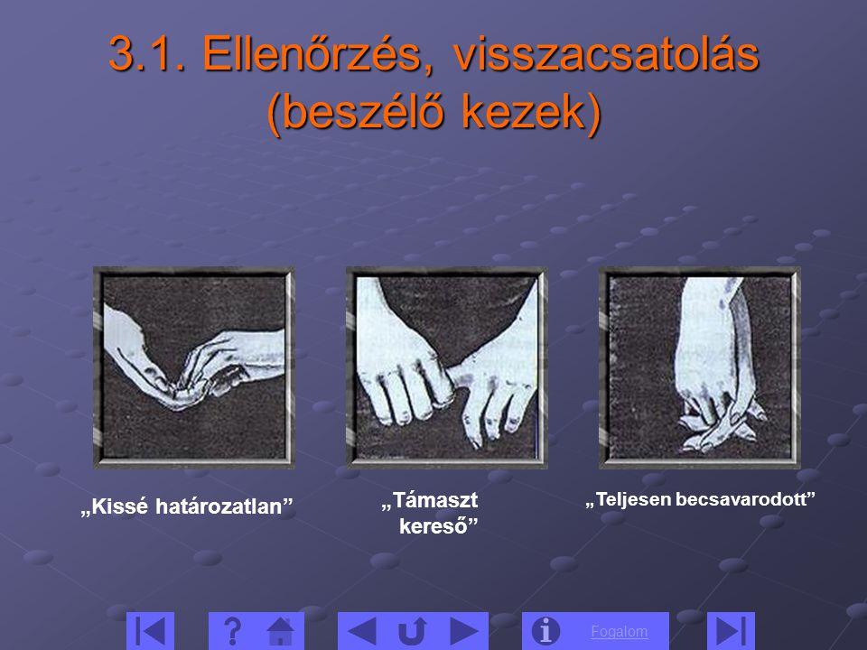 3.1. Ellenőrzés, visszacsatolás (beszélő kezek)