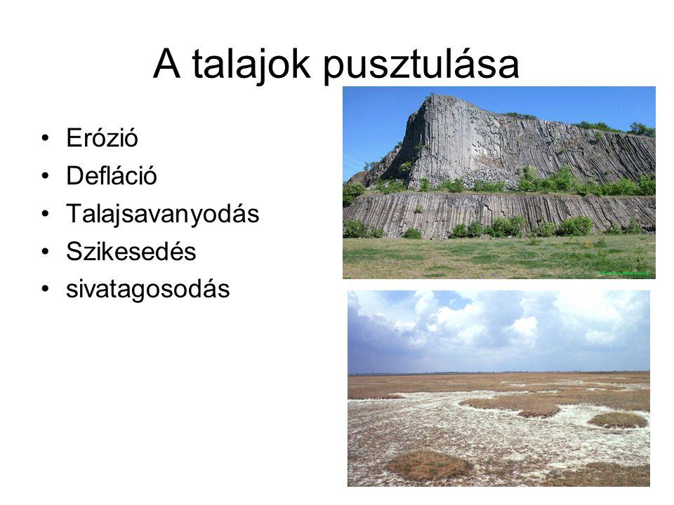 A talajok pusztulása Erózió Defláció Talajsavanyodás Szikesedés