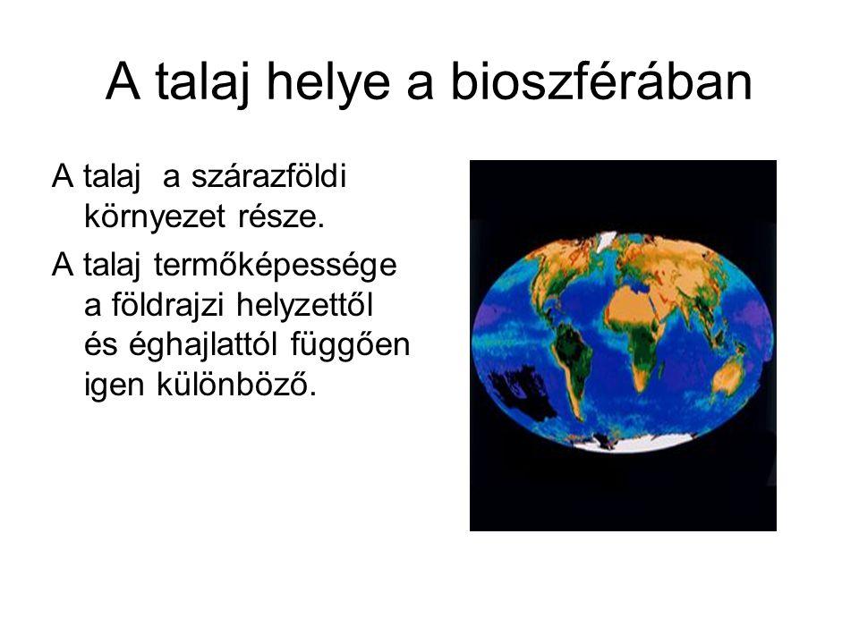 A talaj helye a bioszférában