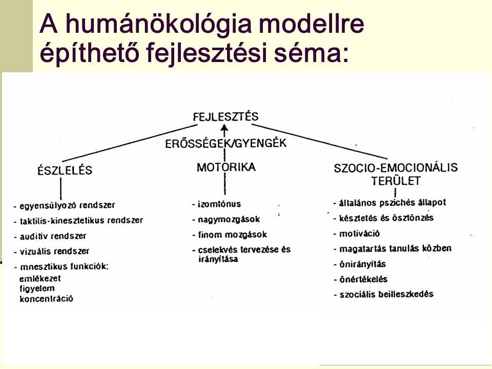 A humánökológia modellre
