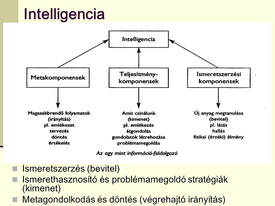 Intelligencia Ismeretszerzés (bevitel)