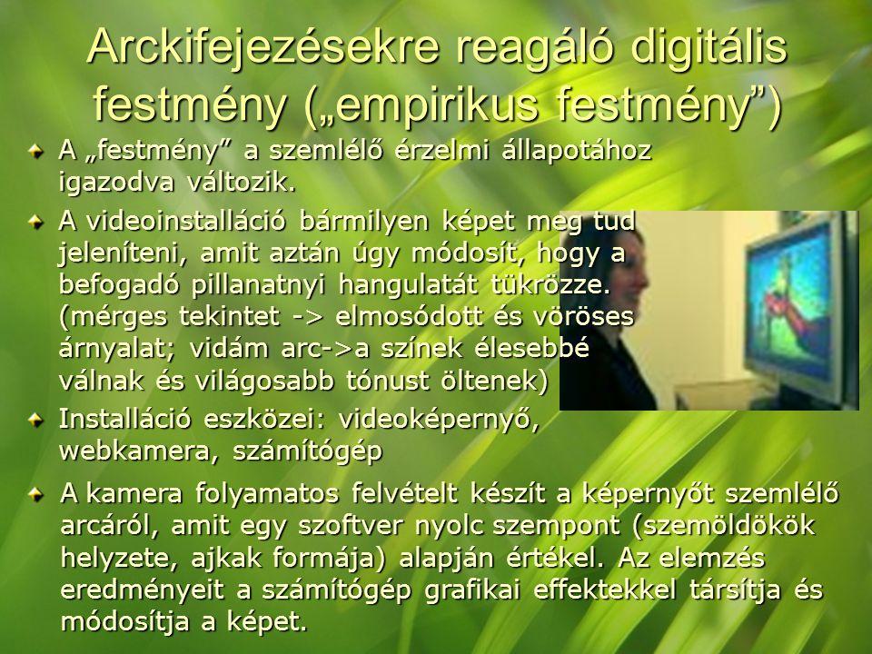 """Arckifejezésekre reagáló digitális festmény (""""empirikus festmény )"""