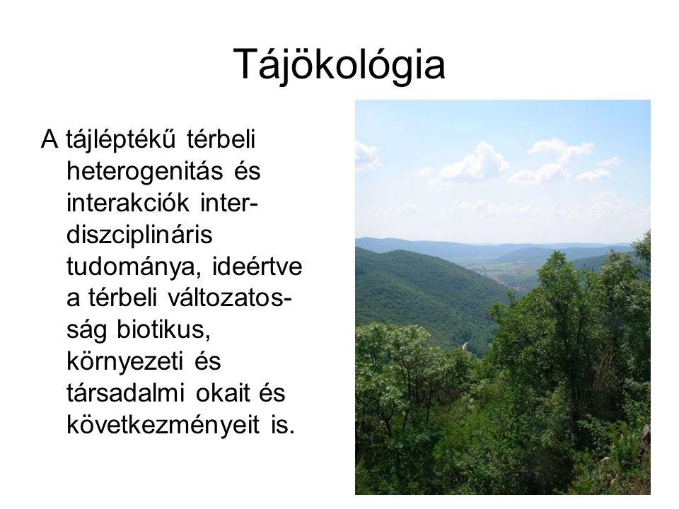 Tájökológia