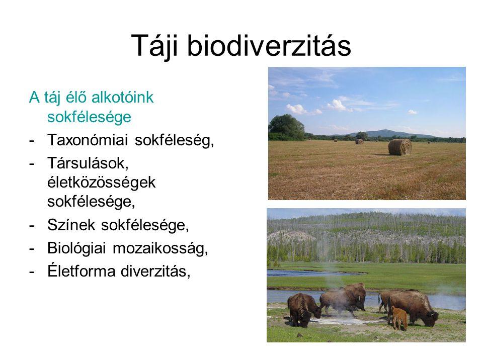 Táji biodiverzitás A táj élő alkotóink sokfélesége