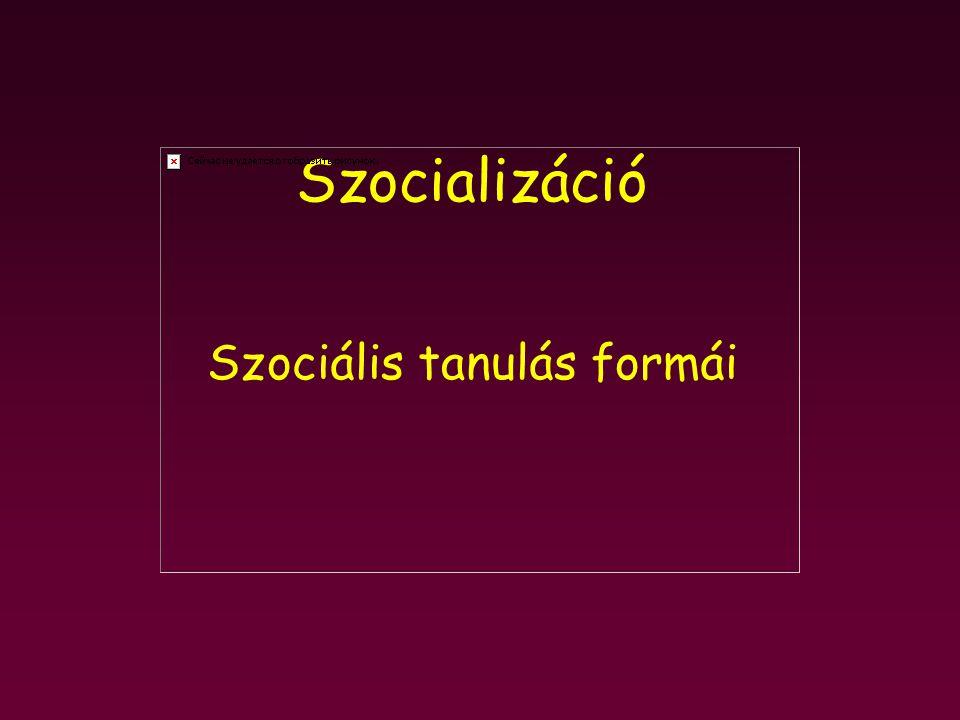 Szociális tanulás formái