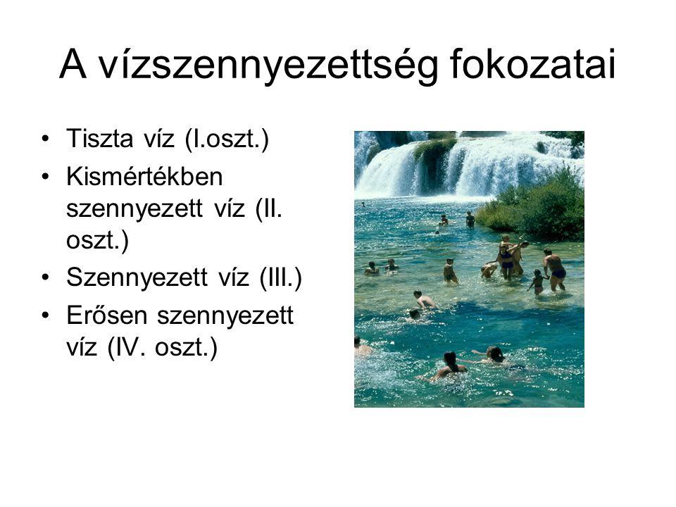 A vízszennyezettség fokozatai
