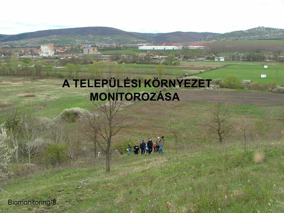 A TELEPÜLÉSI KÖRNYEZET MONITOROZÁSA