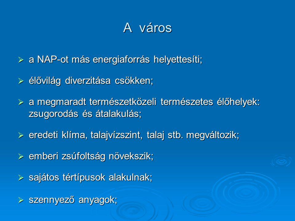 A város a NAP-ot más energiaforrás helyettesíti;