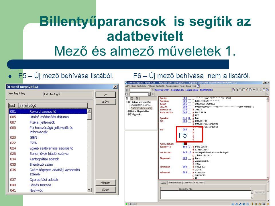Billentyűparancsok is segítik az adatbevitelt Mező és almező műveletek 1.
