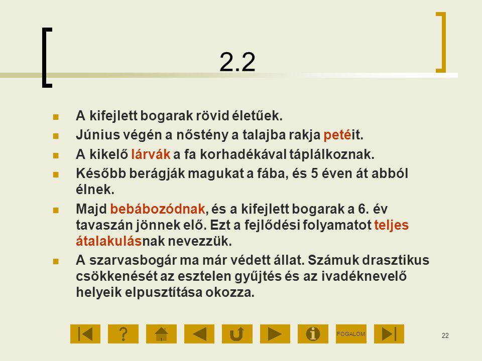 2.2 A kifejlett bogarak rövid életűek.