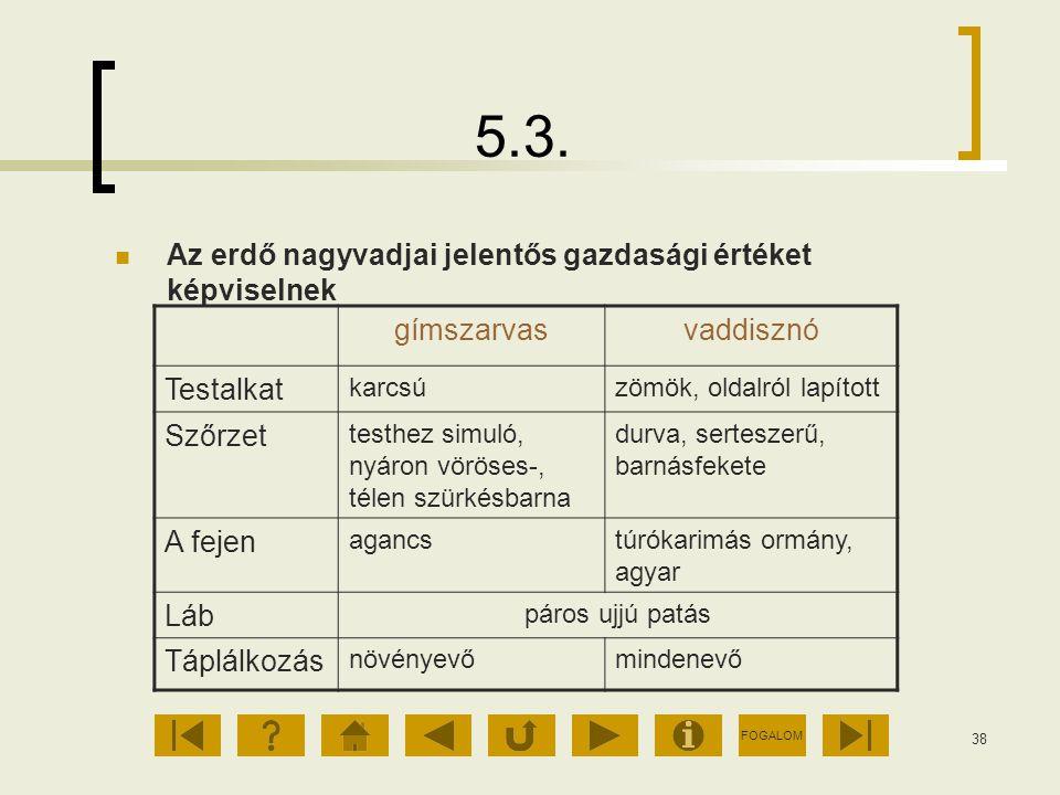 5.3. Az erdő nagyvadjai jelentős gazdasági értéket képviselnek