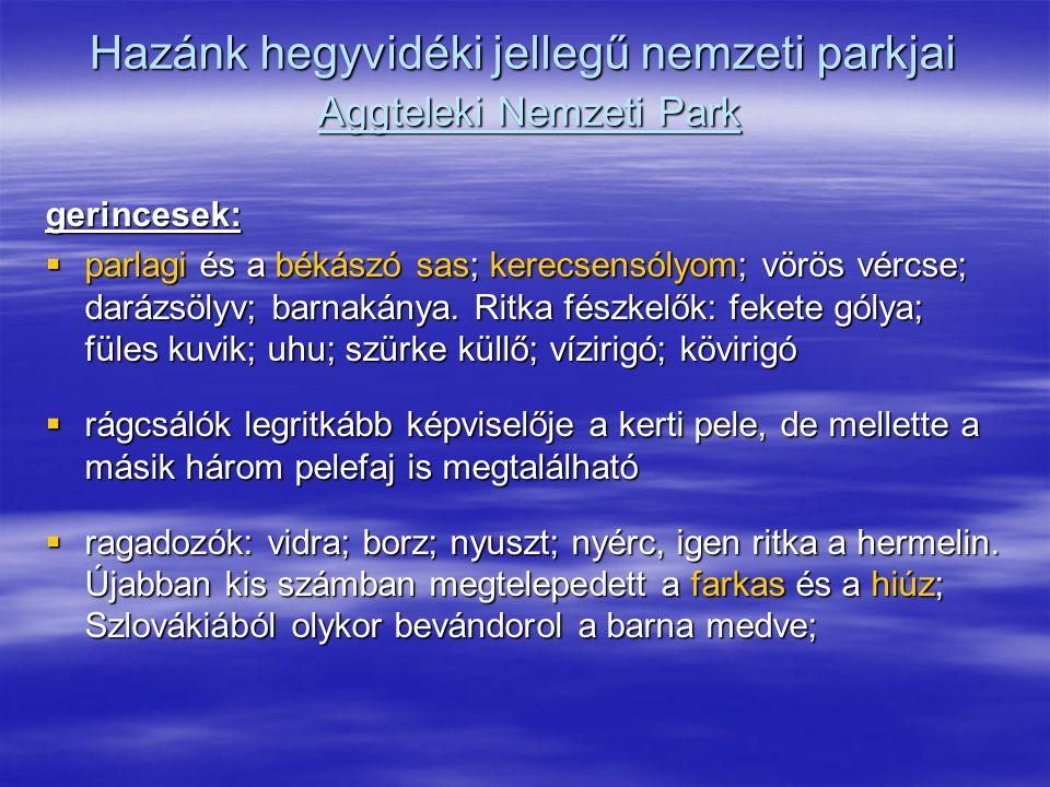 Hazánk hegyvidéki jellegű nemzeti parkjai Aggteleki Nemzeti Park