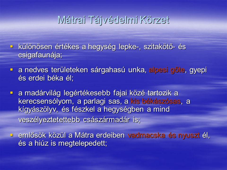 Mátrai Tájvédelmi Körzet