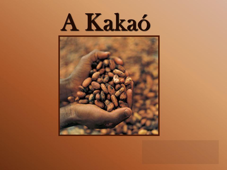 A Kakaó