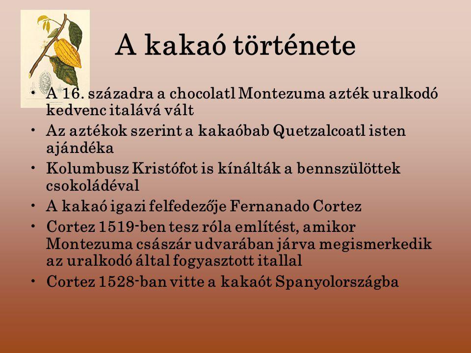 A kakaó története A 16. századra a chocolatl Montezuma azték uralkodó kedvenc italává vált.