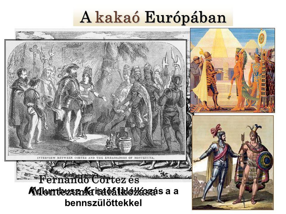 Kolumbusz Kristóf találkozás a a bennszülöttekkel