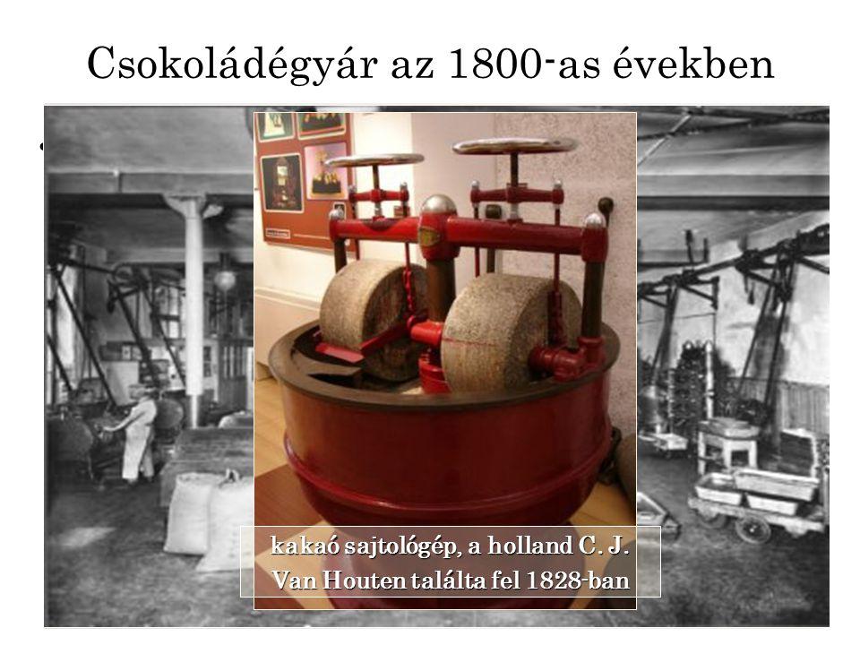 Csokoládégyár az 1800-as években