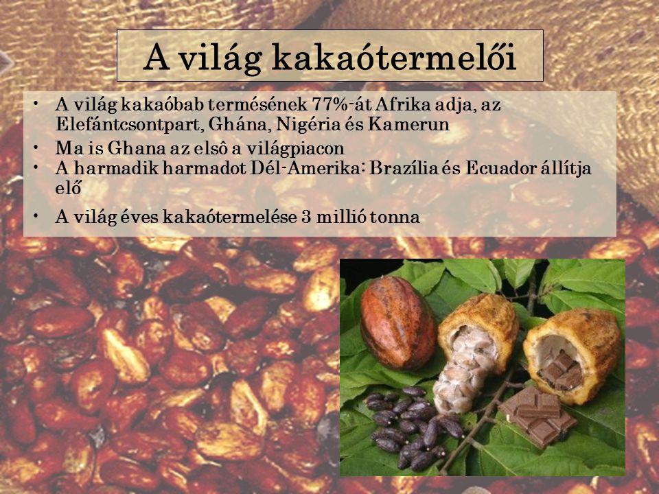 A világ kakaótermelői A világ kakaóbab termésének 77%-át Afrika adja, az Elefántcsontpart, Ghána, Nigéria és Kamerun.