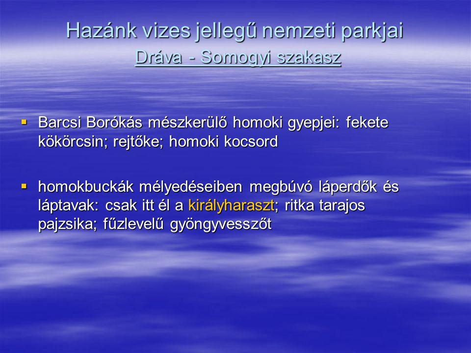 Hazánk vizes jellegű nemzeti parkjai Dráva - Somogyi szakasz