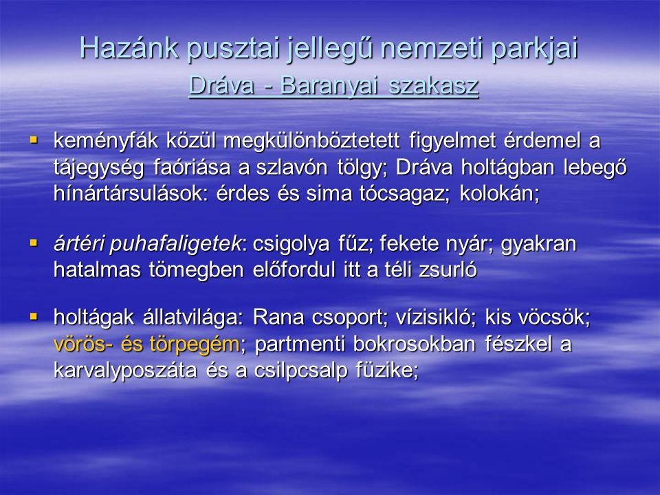 Hazánk pusztai jellegű nemzeti parkjai Dráva - Baranyai szakasz
