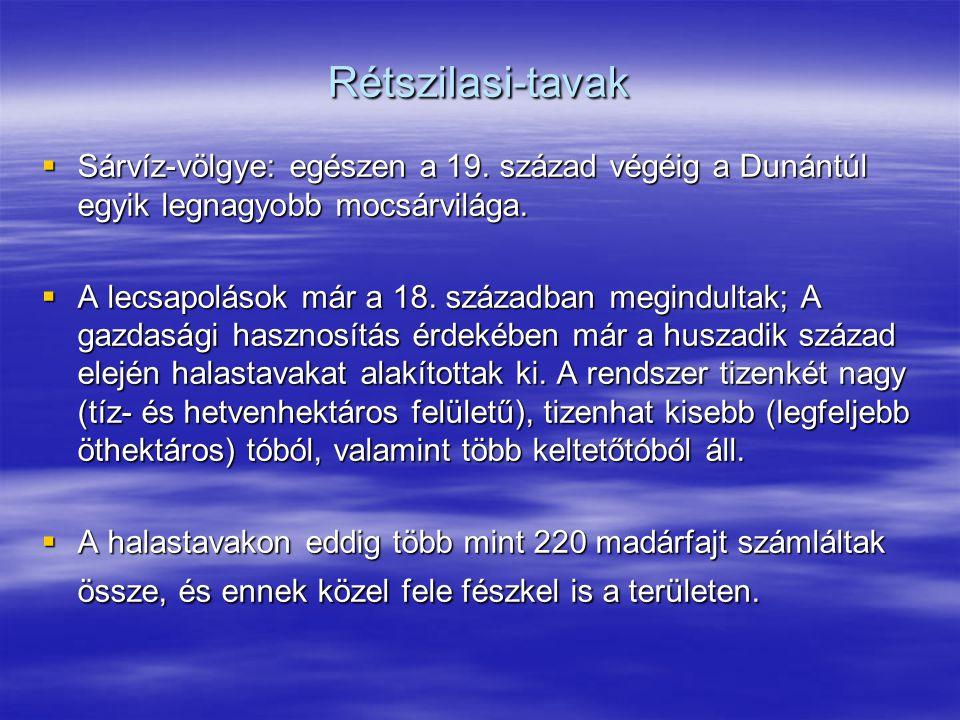 Rétszilasi-tavak Sárvíz-völgye: egészen a 19. század végéig a Dunántúl egyik legnagyobb mocsárvilága.