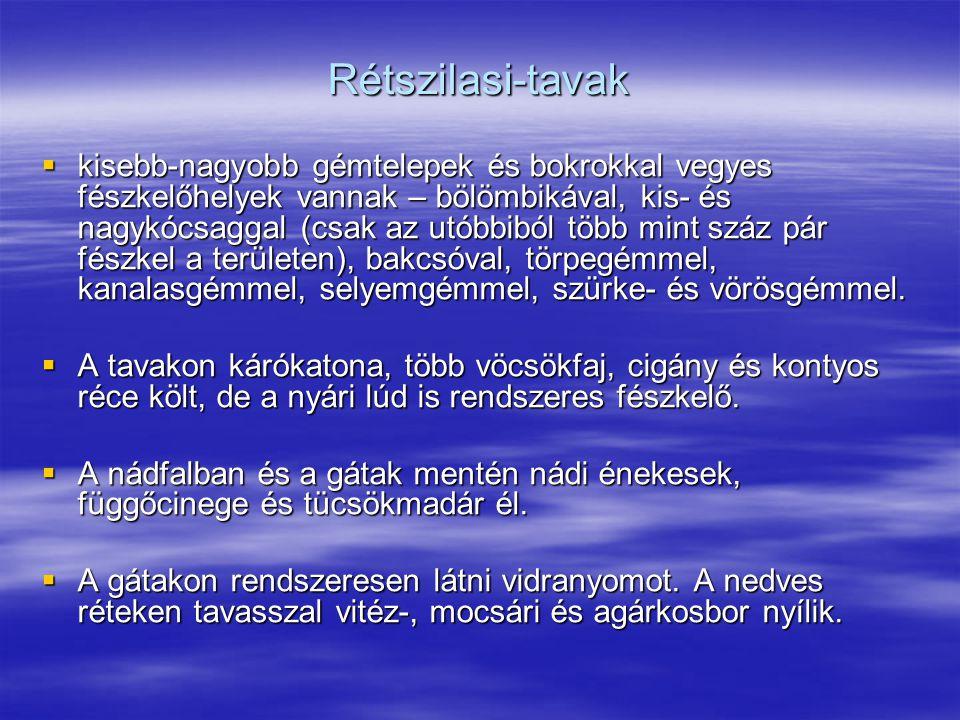 Rétszilasi-tavak