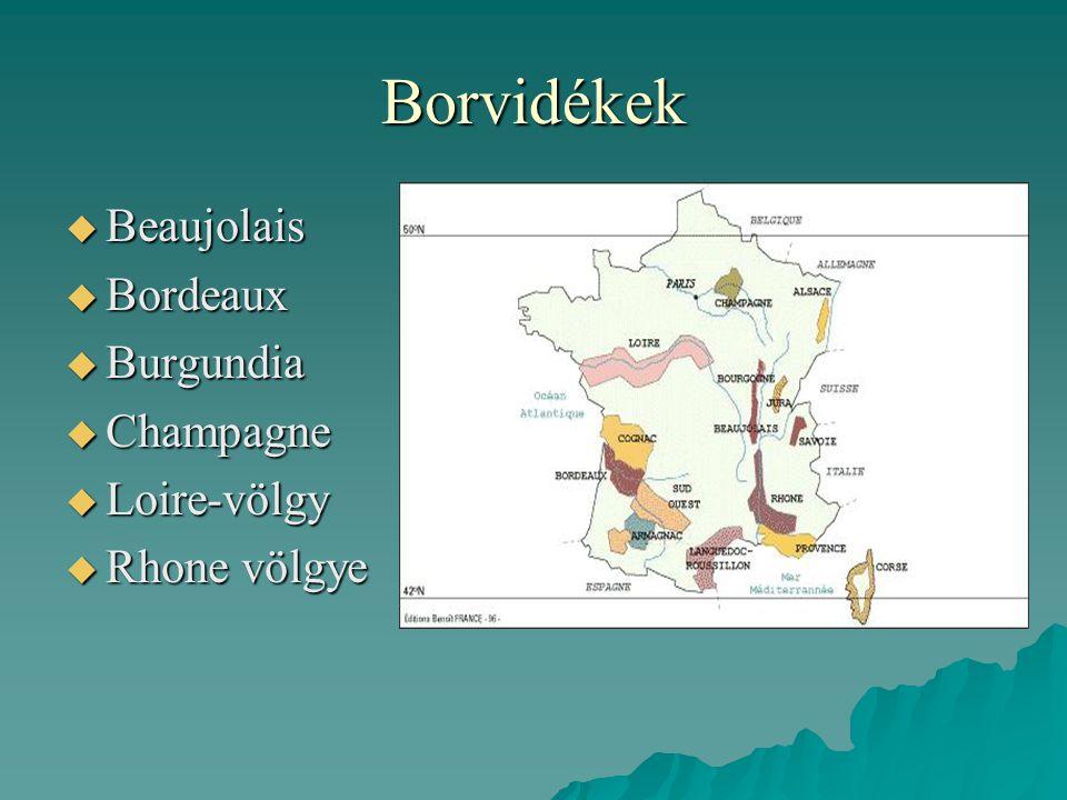 Borvidékek Beaujolais Bordeaux Burgundia Champagne Loire-völgy