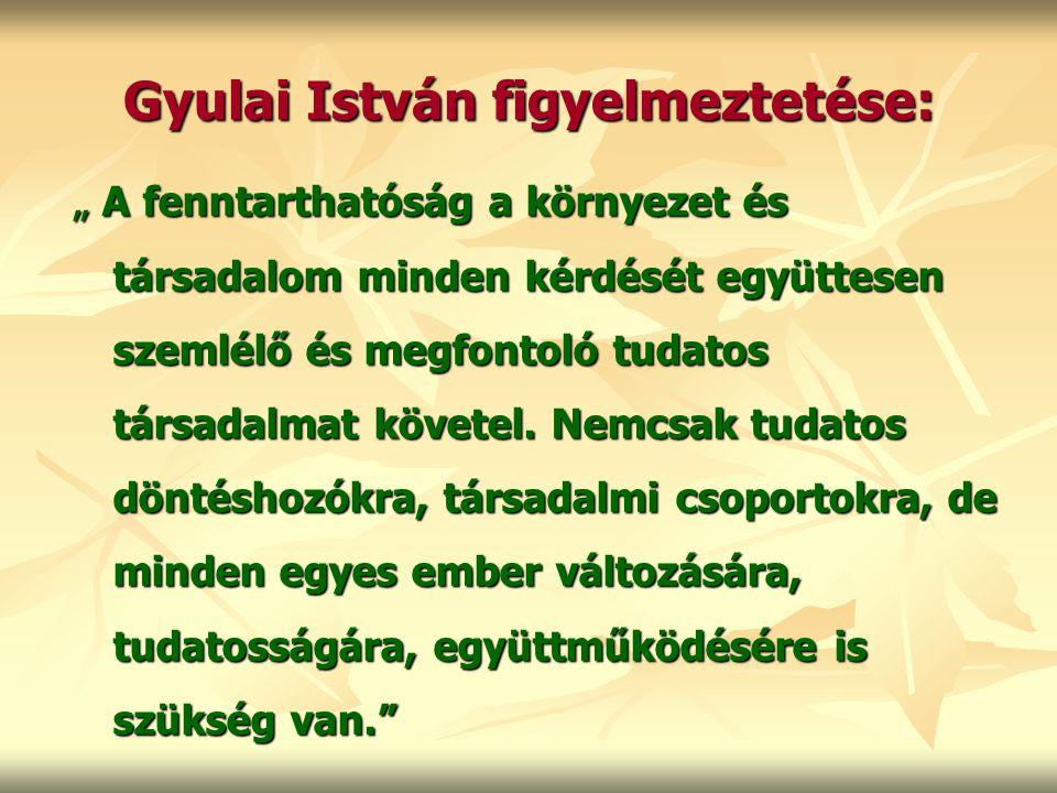 Gyulai István figyelmeztetése: