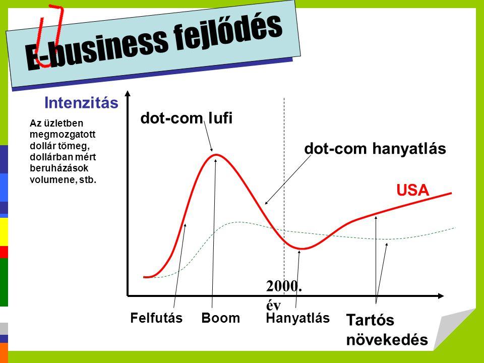 E-business fejlődés Intenzitás dot-com lufi dot-com hanyatlás USA