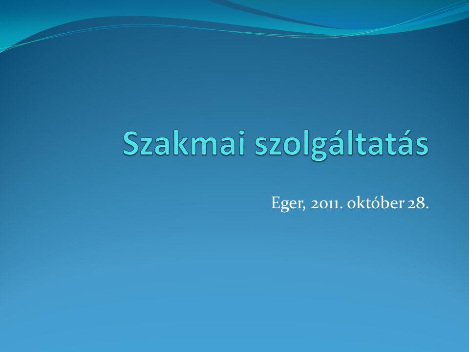 Szakmai szolgáltatás Eger, 2011. október 28.