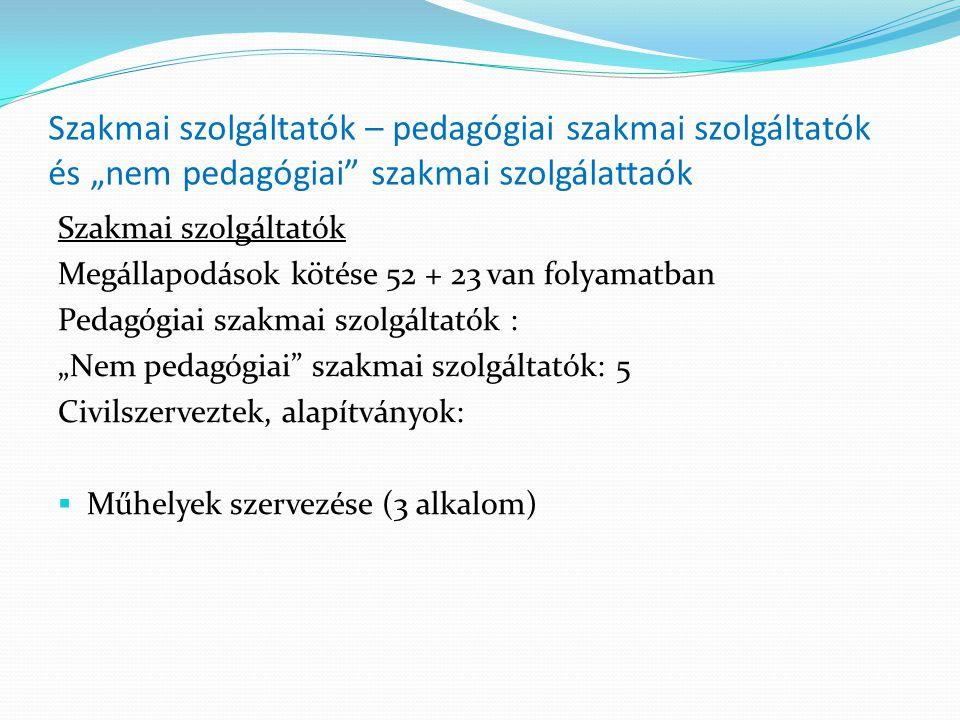"""Szakmai szolgáltatók – pedagógiai szakmai szolgáltatók és """"nem pedagógiai szakmai szolgálattaók"""