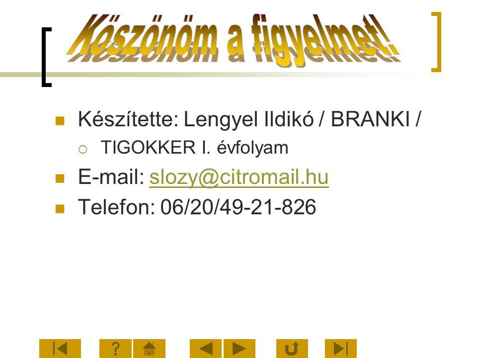 Köszönöm a figyelmet! Készítette: Lengyel Ildikó / BRANKI /