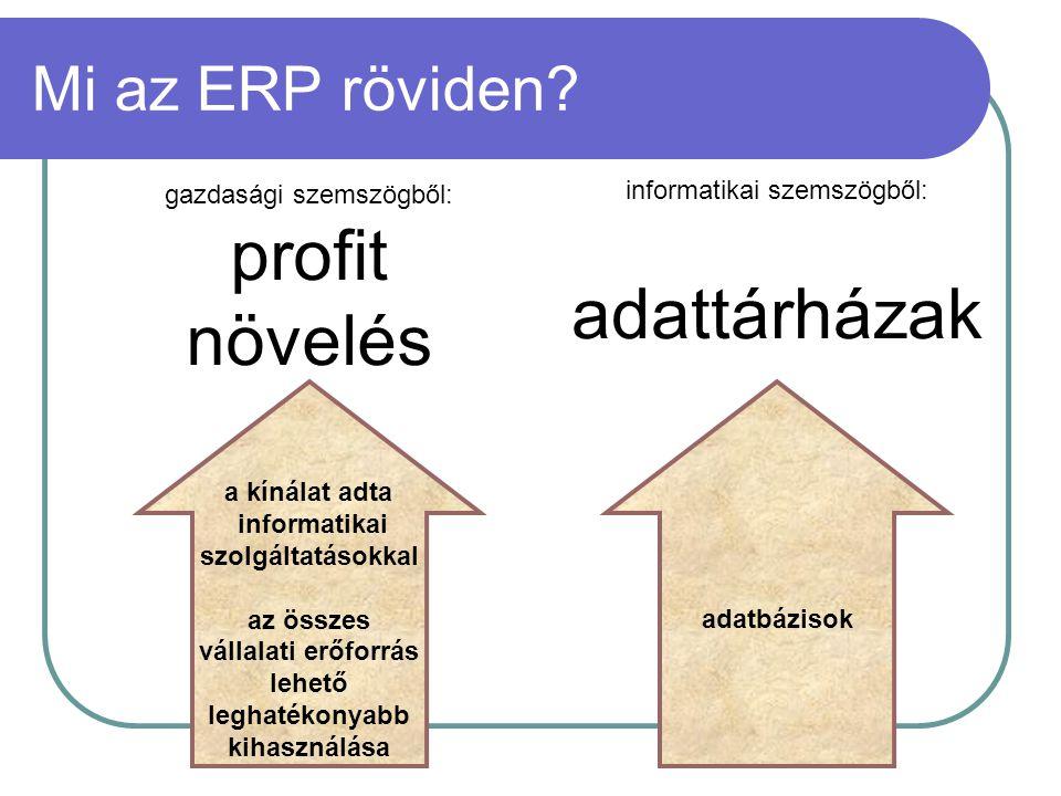 profit növelés adattárházak Mi az ERP röviden gazdasági szemszögből: