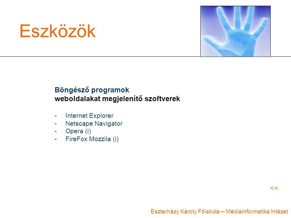 Eszközök Böngésző programok weboldalakat megjelenítő szoftverek