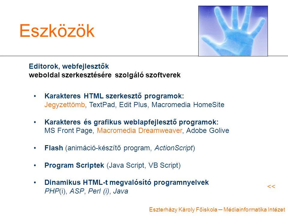 Eszközök Editorok, webfejlesztők