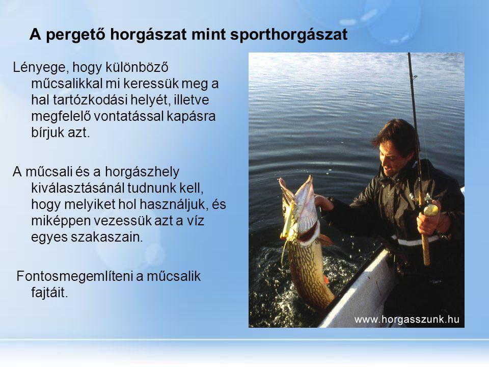 A pergető horgászat mint sporthorgászat