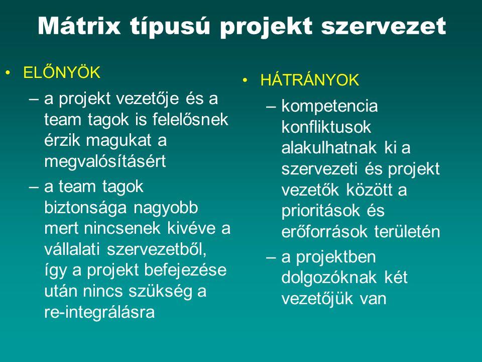 Mátrix típusú projekt szervezet