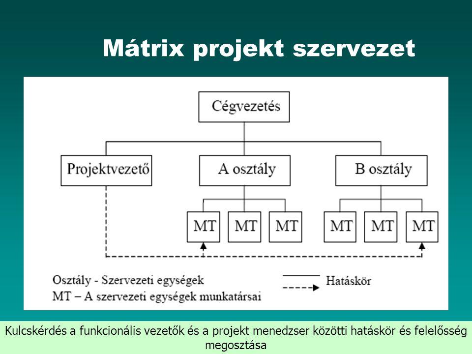 Mátrix projekt szervezet