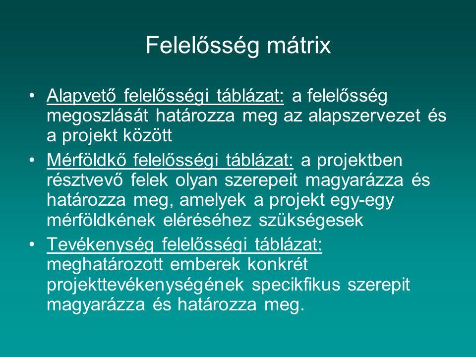 Felelősség mátrix Alapvető felelősségi táblázat: a felelősség megoszlását határozza meg az alapszervezet és a projekt között.