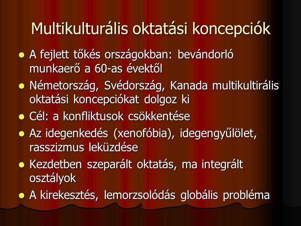 Multikulturális oktatási koncepciók