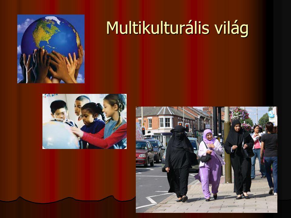 Multikulturális világ