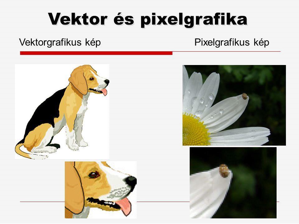 Vektor és pixelgrafika