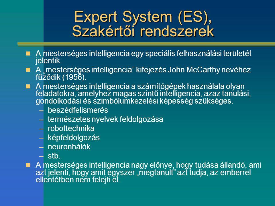 Expert System (ES), Szakértői rendszerek
